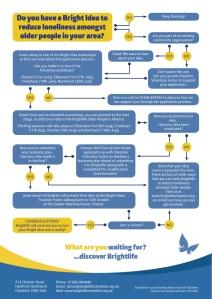 Bright Ideas flowchart infographic
